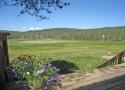 Bennet Flat meadow Tahoe Donner